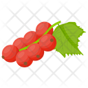 Lingonberry Berry Fruit Berries Icon