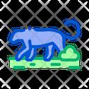 Lion Wild Animal Icon