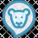 Baby Animal Lion Zoo Icon