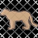 Lioness Animal Wildlife Icon