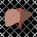 Liver Body Organ Icon