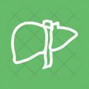 Liver Organ Body Icon