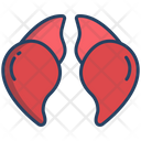 Liver Meal Meat Icon