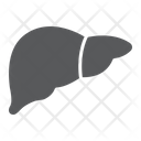 Liver Anatomy Biology Icon