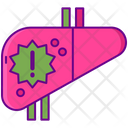 Liver Disease Icon