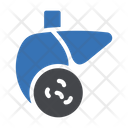 Liver Infection Germs Icon