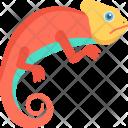 Lizard Reptile Animal Icon