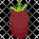 Loganberry Icon