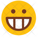 Lol Smile Happy Icon