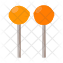 Lollipops Sucker Candy Orange Lollipop Icon