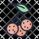 Longan Fruit Food Icon