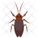 Longhorn Beetle Insect Scarab Beetle Icon