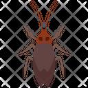 Longhorn Beetle Icon