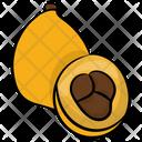Loquat Fruit Healthy Fruit Icon