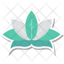 Lotus Flower Lotus Lily Icon