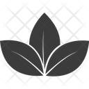Lotus Lotus Lily Lotus Lily Flower Icon