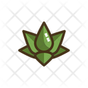 Mlotus Lotus Water Lily Icon