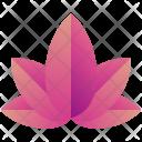 Lotus Logogram Shape Icon