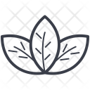 Lotus Lily Flower Icon