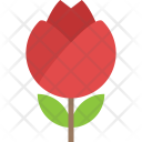 Water Lily Lotus Icon