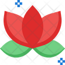 Lotusm Lotus Flower Lotus Icon