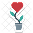 Love Plant Heart Plant Icon