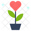 Flower Blossom Heart Icon