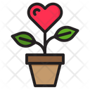 Love Plant Tree Plant Icon