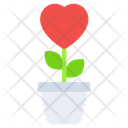 Love Plant Love Growth Potted Plant Icon