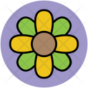 Luck Flower Clover Icon