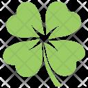 Clover Shamrock Four Leaf Icon