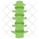 Lumbar Lumberjack Lumbar Region Icon