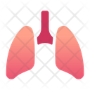 Lung Heart Heartbeat Icon