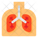 Lung Pneumonia Virus Icon