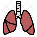 Lung Asthma Respiration Icon