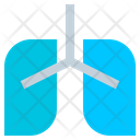 Medical Health Lung Icon
