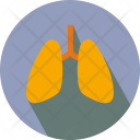 Lungs Heart Body Icon