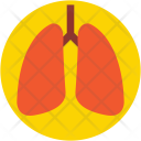 Lungs Breathe Pulmonology Icon