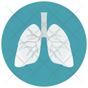 Lungs Human Organ Icon