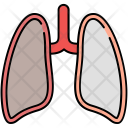 Lungs Body Organ Icon