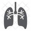 Lungs Anatomy Biology Icon