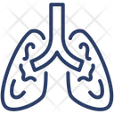 Lungs Respiration Organ Icon