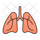 Lungs Breath Pulmonology Icon
