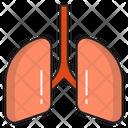 Lungs Breath Body Icon