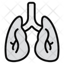 Lungs Pulmonology Respiratory Tract Icon