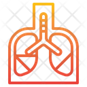 Lungs Human Anatomy Icon