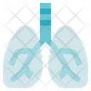 Physiotherapy Lungs Organ Icon