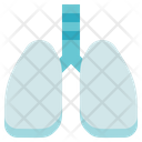 Biology Lungs Organ Icon