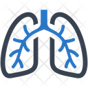 Lungs Lung Pulmonology Icon