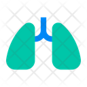 And Respiratory System Icon